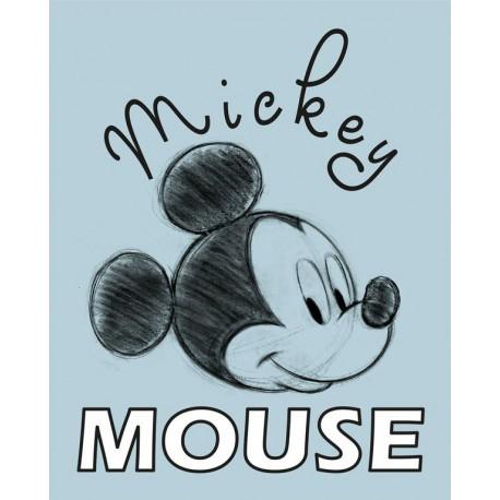 Canvas 20X25 Cm Disney Mickey Mouse