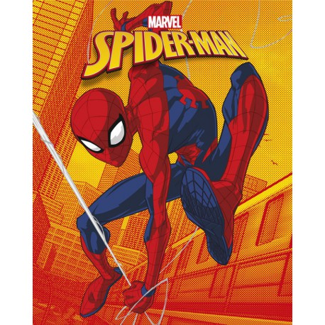 Canvas 20X25 Cm Marvel Spiderman