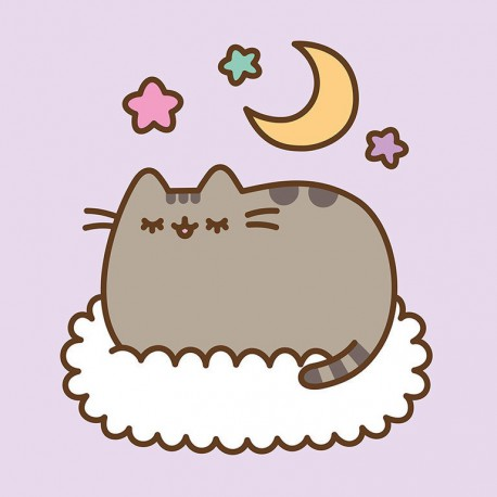 Canvas 30X30 Cm Pusheen The Cat Dreaming