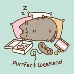 Canvas 30X30 Cm Pusheen The Cat Purrfect Weekend
