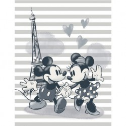 Canvas 30X40 Cm Disney Mickey & Minnie Paris