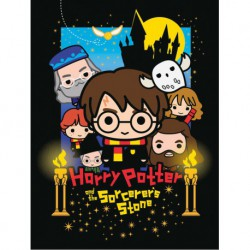 Canvas 30X40 Cm Harry Potter The Sorcerer'S Stone