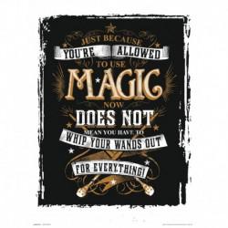 Lámina 30X40 Cm Harry Potter Magic