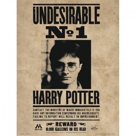 Lámina 30X40 Cm Harry Potter Undesirable Nº1