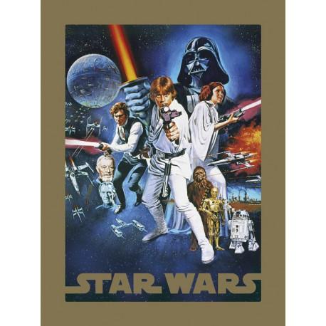 Lámina 30X40 Cm Star Wars A New Hope