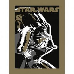 Lámina 30X40 Cm Star Wars Darth Vader
