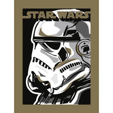 Lámina 30X40 Cm Star Wars Stormtrooper