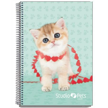 Cuaderno Tapa Dura A5 Myrna Gato