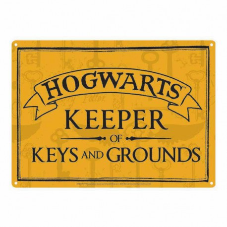 Chapa Metalica Pequeña Harry Potter Keeper Of Keys