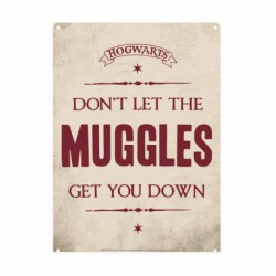 Chapa Metalica Pequeña Harry Potter Muggles