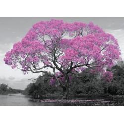 Poster Gigante Tree Blossom