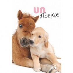 Tarjeta Felicitacion Un Abrazo