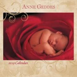 Calendario 30X30 2019 Anne Geddes