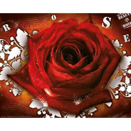 Mini Poster Rose Lyrics
