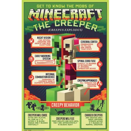 Poster Minecraft Creepy Behaivor