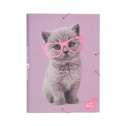 Carpeta Solapas Studio Pets Cats 2019