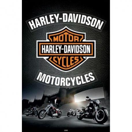 Poster Harley Davidson Motocicletas