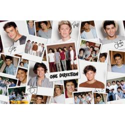 Poster One Direction Polaroids