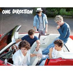 Miniposter One Direction Coche