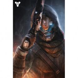 Poster Destiny Cayde 6