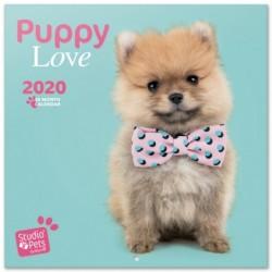 Calendario 2020 30X30 Studio Pets Puppies