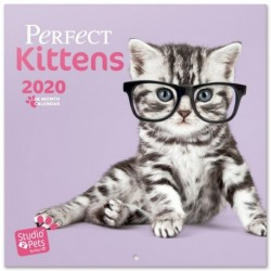 Calendario 2020 30X30 Studio Pets Kittens