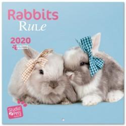 Calendario 2020 30X30 Studio Pets Conejito