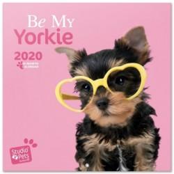 Calendario 2020 30X30 Studio Pets Yorkie