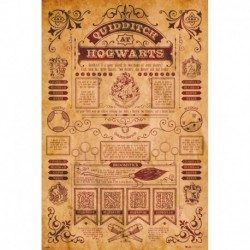 Poster Harry Potter Quidditch At Hogwarts