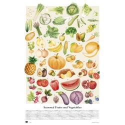 Poster Vegetales Y Frutas De Temporada
