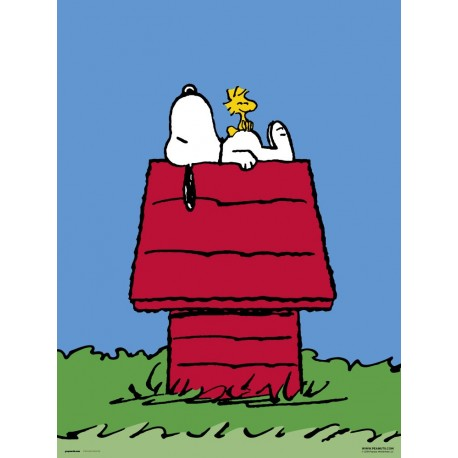 Print 30X40 Cm Snoopy Home