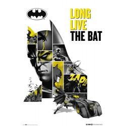 Poster Dc Comics 80 Aniversario Batman