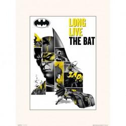 Lamina 30X40 Cm Dc Comics 80 Aniversario Batman