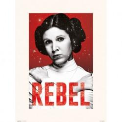 Lamina 30X40 Cm Star Wars Leia Rebel