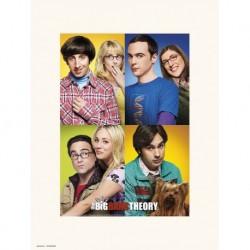 Lámina 30X40 Cm The Big Bang Theory Mosaico