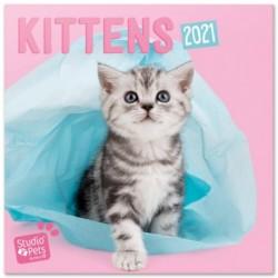 Calendario 2021 30X30 Studio Pets Kittens