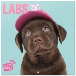Calendario 2021 30X30 Studio Pets Labs