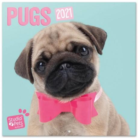 Calendario 2021 30X30 Studio Pets Pugs