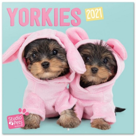 Calendario 2021 30X30 Studio Pets Yorkie