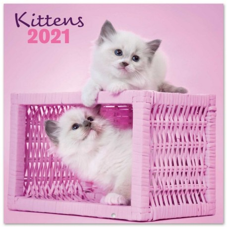 Calendario 2021 30X30 Chantrenne Cat