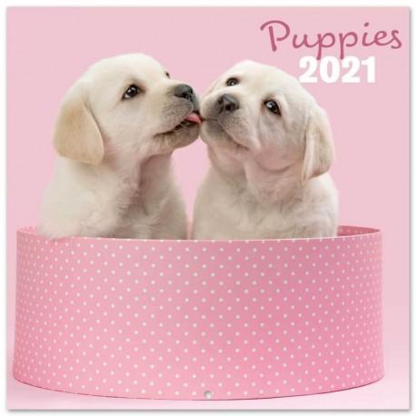 Calendario 2021 30X30 Chantrenne Dog