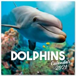 Calendario 2021 30X30 Dolphins