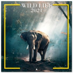 Calendario 2021 30X30 Wildlife