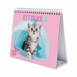 Calendario De Escritorio Deluxe 2021 Studio Pets Cats