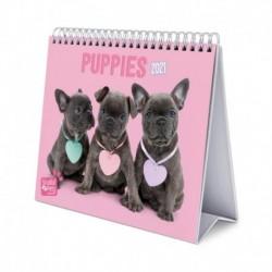Calendario De Escritorio Deluxe 2021 Studio Pets Dogs