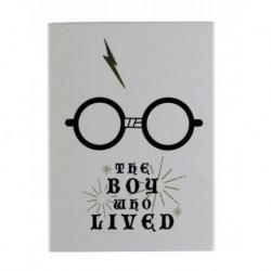 imán Metal Harry Potter Boy Who Lived