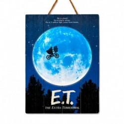 Cuadro De Madera 3D E.T. Luna Internacional
