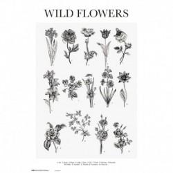 Poster Wild Flowers
