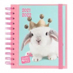 Agenda Escolar 2021/2022 Dia Pagina Studio Pets Rabbits