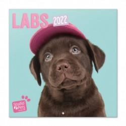 Calendario 2022 30X30 Studio Pets Labs